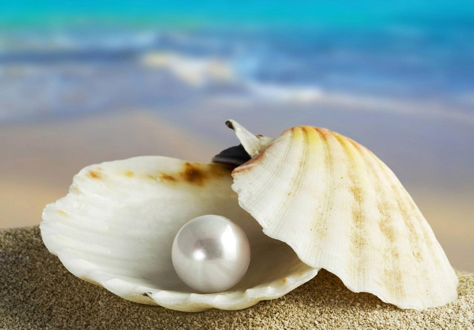 Les perles d'octobre