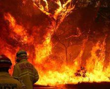 Australie en feu
